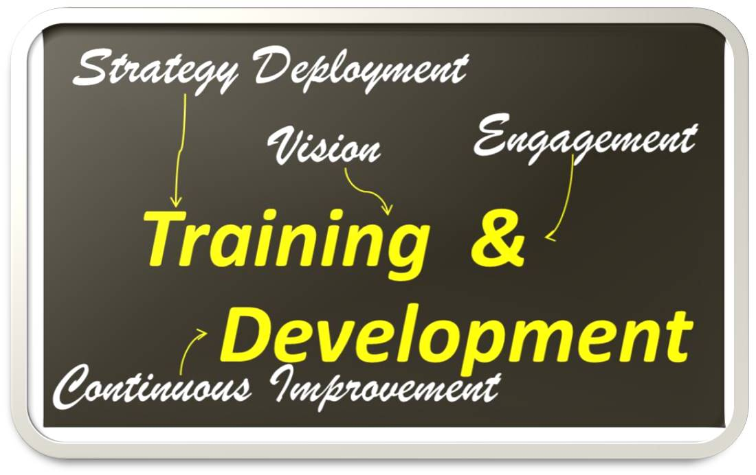 trainng and development, training, lean training, lean consultant