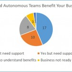 Autonomous Teams, Team Survey. Lean Surveys
